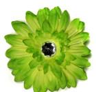 Lime Gerbera Flower with Rhinestone